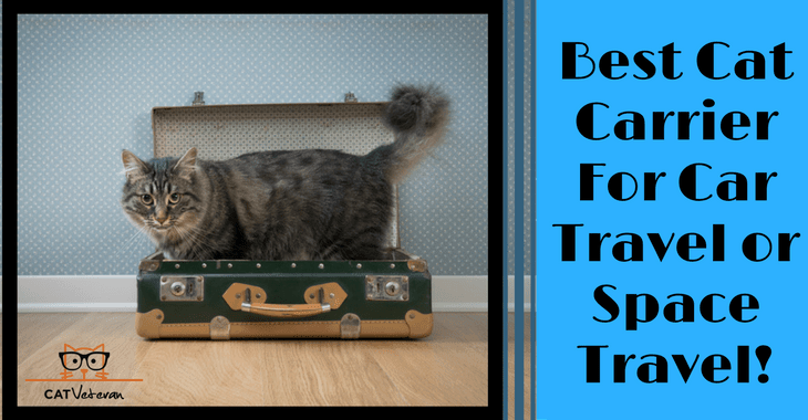 Sleepypod Mobile Pet Bed: The Best Cat Carrier For Car Travel