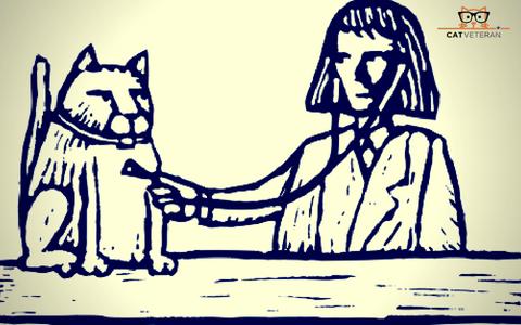 Illustration of Vet Giving Cat a Checkup