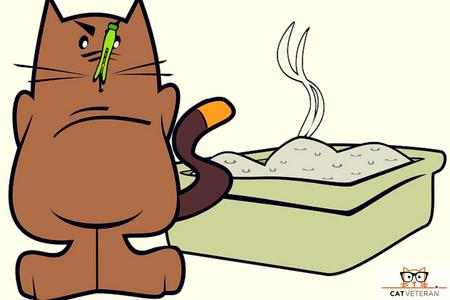 cat stinky cat litter cartoon cat veteran (1)