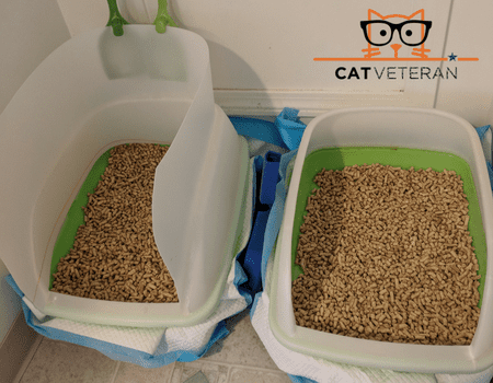 my two purina breeze litter boxes custom set up