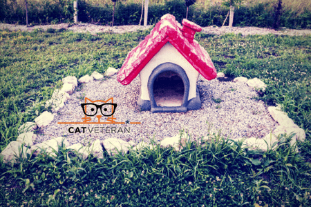 Portable Cat Enclosures For Outdoors