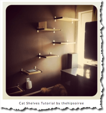 Wall Mounted Stairs For Cats Behind The Scenes Of A Feline Dream