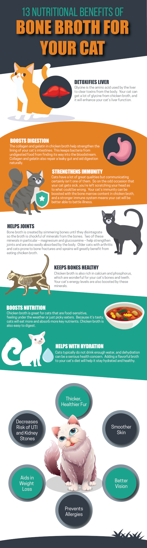 13 Nutritional Benefits Of Bone Broth For Your Cat