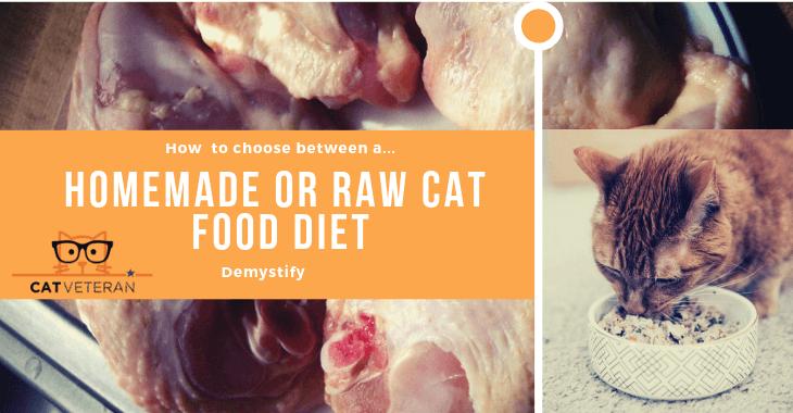 homemade cat food or raw cat food