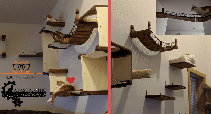 catastrophic creations cat shelving