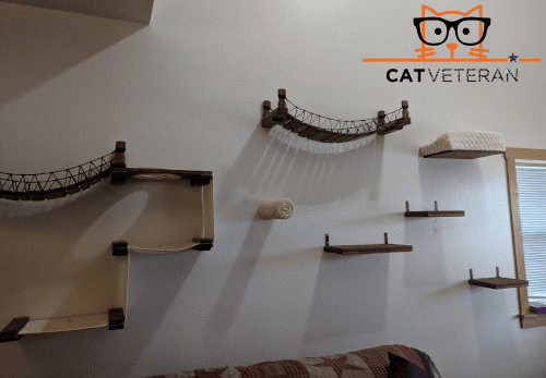 finished cat shelving wall