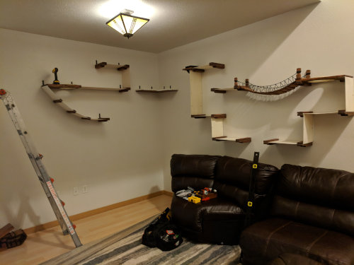 installation for cat shelving